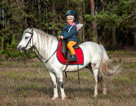 kinderfeestje thema paardrijden